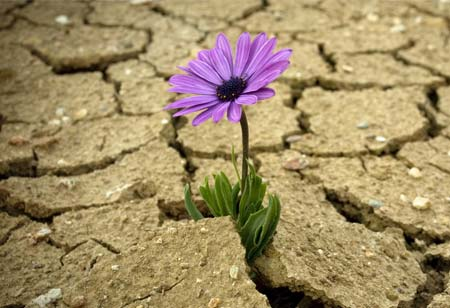 A Time For Resiliency